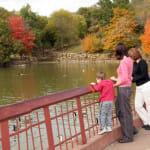 Krug Park Lagoon in the fall